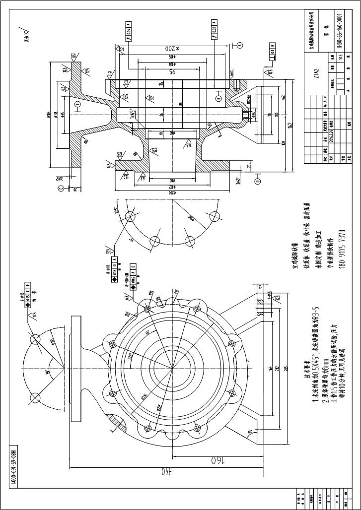 鈦泵IH80-65-160BT鈦泵體鑄件鑄造圖-城際鈦鎳.JPG